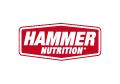 logo hammer 120x84 color s